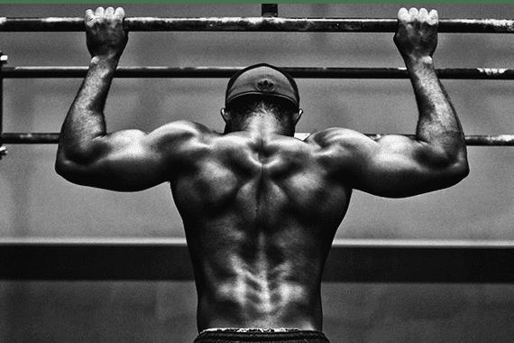Biceps -