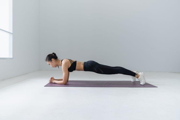 bodyweight workout book plank