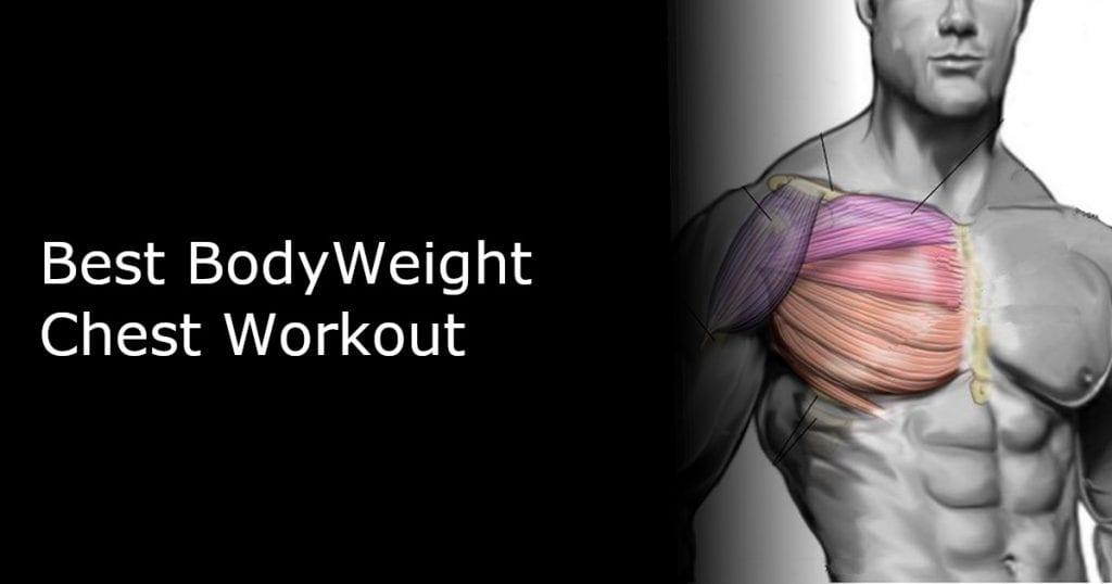 Best Bodyweight Chest Workout