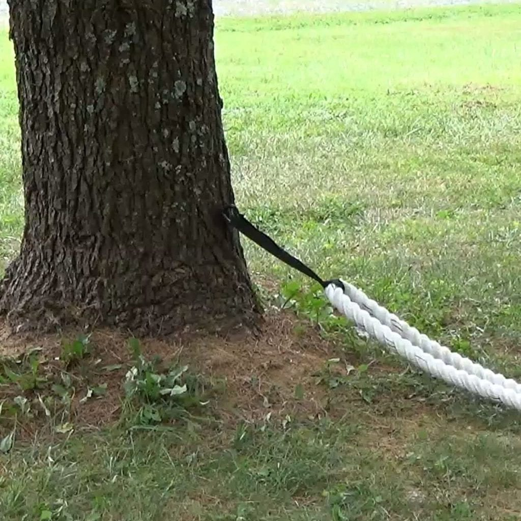 Battle Rope Tree Mount